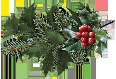 Aangepaste-openingstijden-tijdens-Kerst